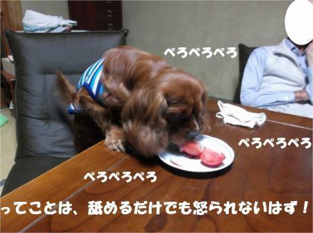 015_convert_20130702173652.jpg