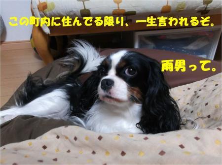 018_convert_20131022173632.jpg