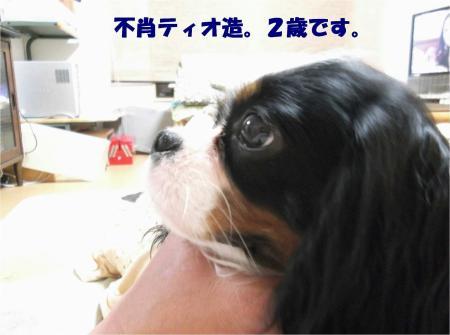 01_convert_20130402171201.jpg