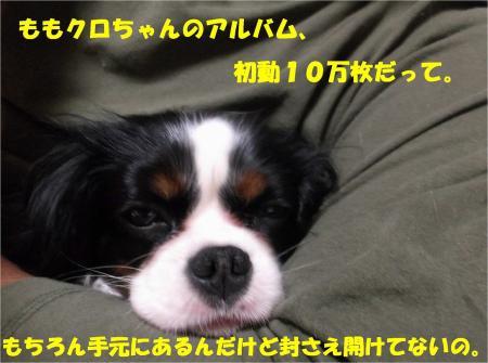 01_convert_20130411163819.jpg