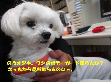 01_convert_20130419172514.jpg