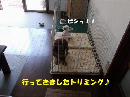 01_convert_20130531165828.jpg
