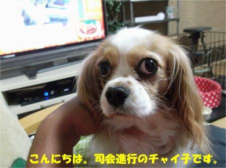 01_convert_20130607184423.jpg