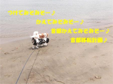 01_convert_20130610170127.jpg