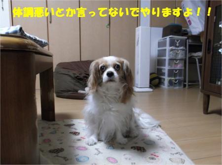 01_convert_20130611165354.jpg