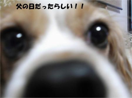 01_convert_20130618173958.jpg