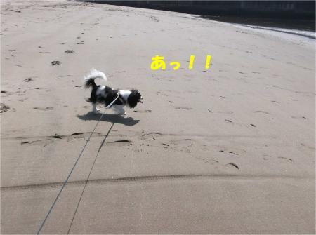 01_convert_20130624172038.jpg