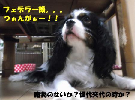 01_convert_20130627171336.jpg