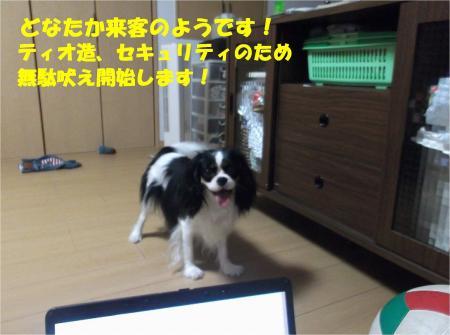 01_convert_20130725190731.jpg