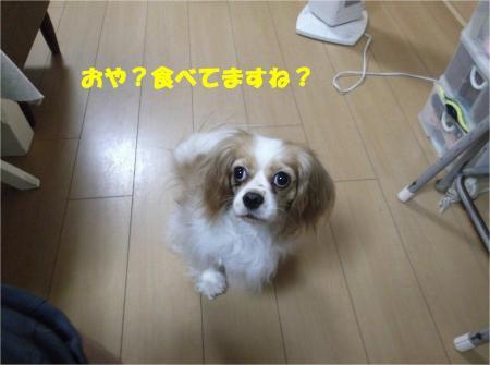 01_convert_20130801174729.jpg