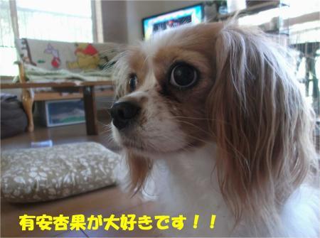 01_convert_20130820181245.jpg