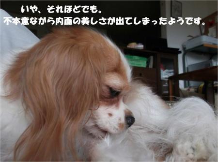 01_convert_20130910173448.jpg