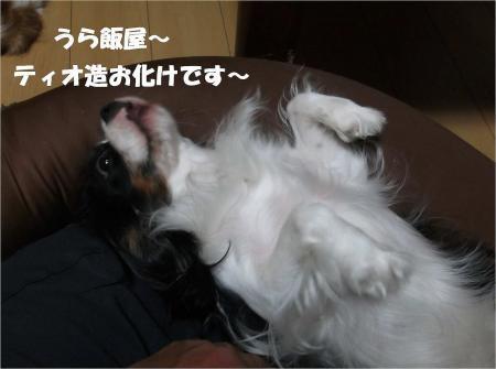 01_convert_20130912182554.jpg