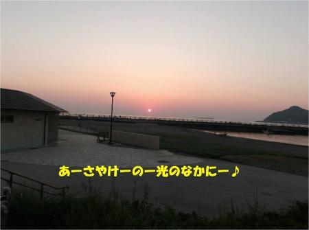 01_convert_20130925175200.jpg