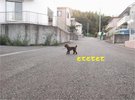 01_convert_20130930093314.jpg