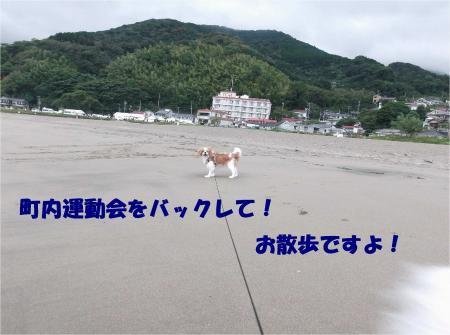 01_convert_20131007174040.jpg