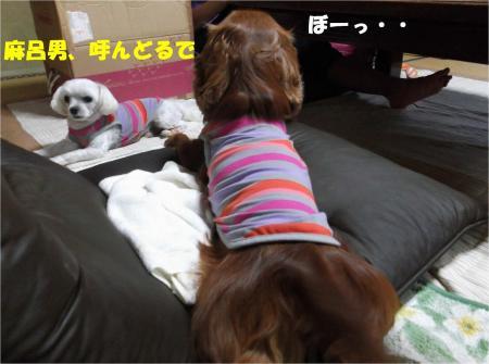 01_convert_20131010174123.jpg