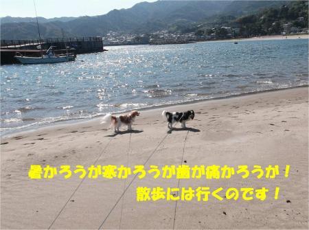01_convert_20131012162023.jpg