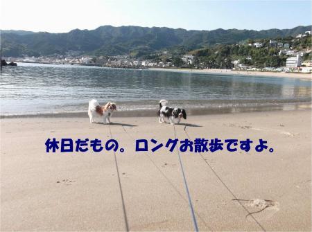 01_convert_20131015170726.jpg