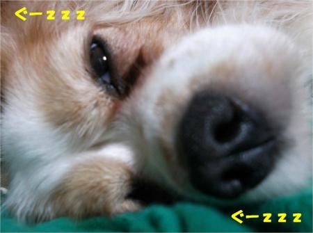 01_convert_20131016165002.jpg