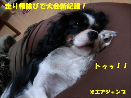 01_convert_20131018170807.jpg
