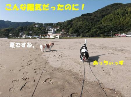 01_convert_20131025175930.jpg