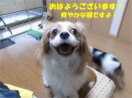 01_convert_20131026170631.jpg