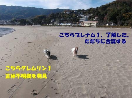 01_convert_20131204180116.jpg