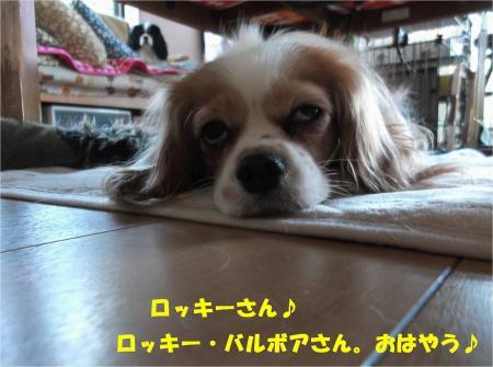 01_convert_20131212173752.jpg