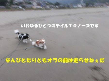 02-2_convert_20130401181554.jpg