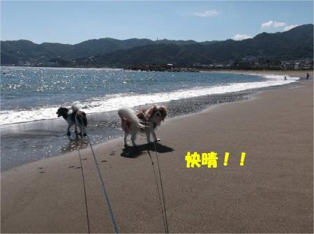 021_convert_20130930093528.jpg