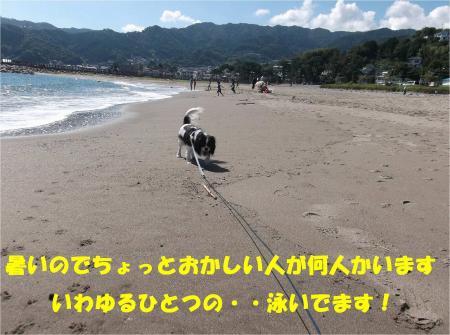 023_convert_20130930093549.jpg