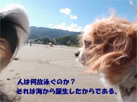 024_convert_20130930093603.jpg