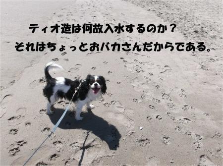 025_convert_20130930093614.jpg
