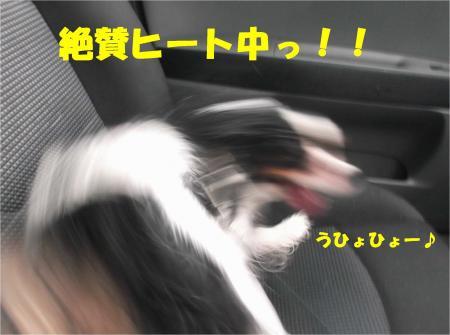 027_convert_20131001132126.jpg