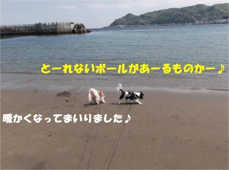 02_convert_20130415172708.jpg