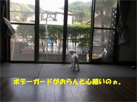 02_convert_20130419172527.jpg