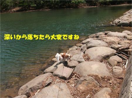 02_convert_20130430112450.jpg