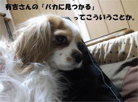 02_convert_20130501181804.jpg