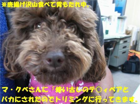 02_convert_20130529160124.jpg