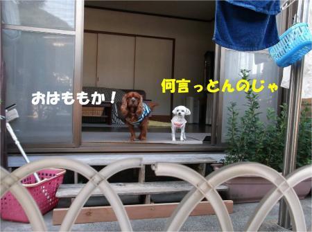 02_convert_20130604173310.jpg