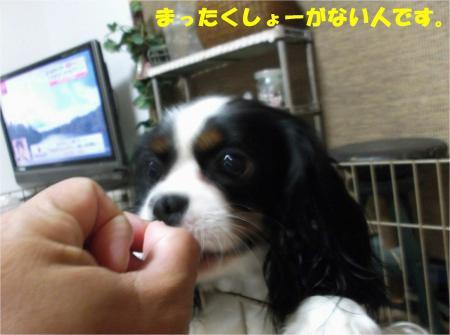 02_convert_20130605185601.jpg