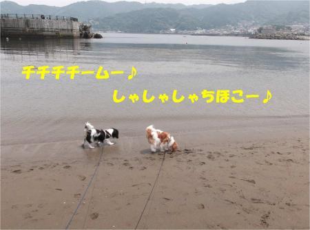 02_convert_20130610170143.jpg