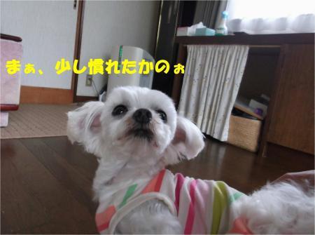 02_convert_20130612170934.jpg