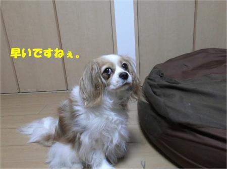 02_convert_20130613170321.jpg