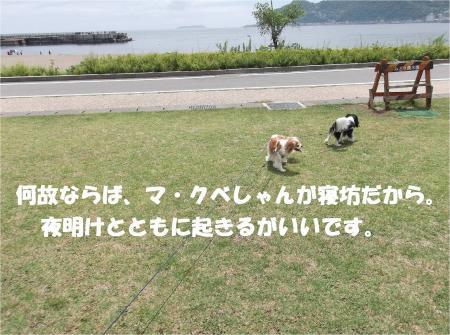 02_convert_20130617180156.jpg