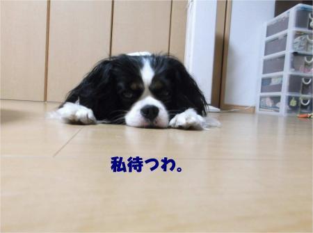 02_convert_20130618174011.jpg