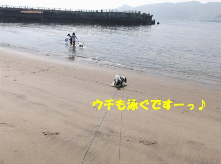 02_convert_20130624172049.jpg