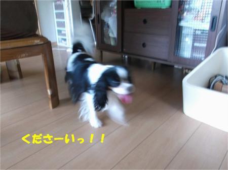 02_convert_20130711173507.jpg