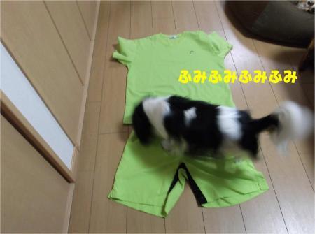 02_convert_20130722145735.jpg